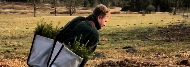Plant et træ - Bæredygtighed